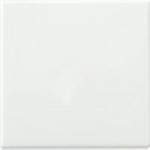 Клавиша для выключателя JUNG EP490WW ECO Profi, белая
