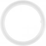 Лампа светодиодная Osram 4058075135482 ST9-EM 32 123° 20 W/4000K G10q, нейтральный белый свет, матовая колба
